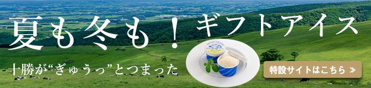 アイスクリームギフト特設サイト